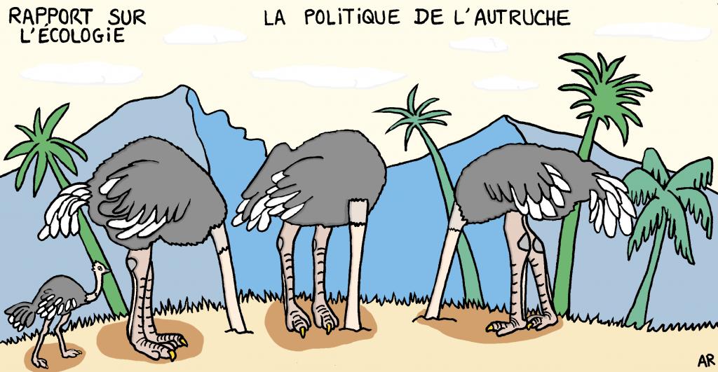 Dessin d'humour sur la politique de l'autruche - dessin d'animaux