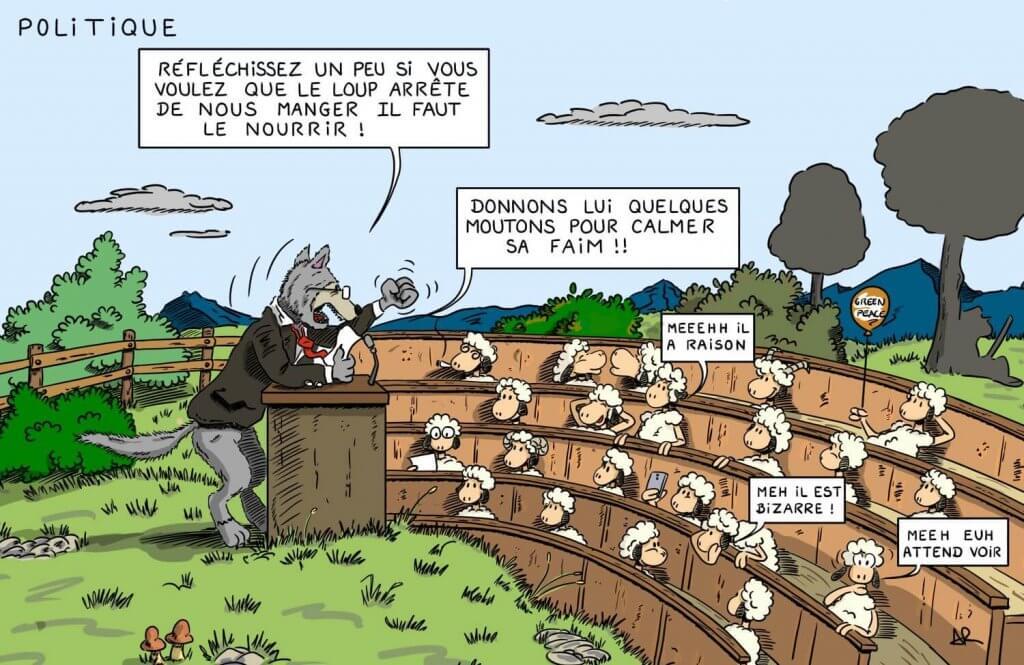 dessin humoristique mouton